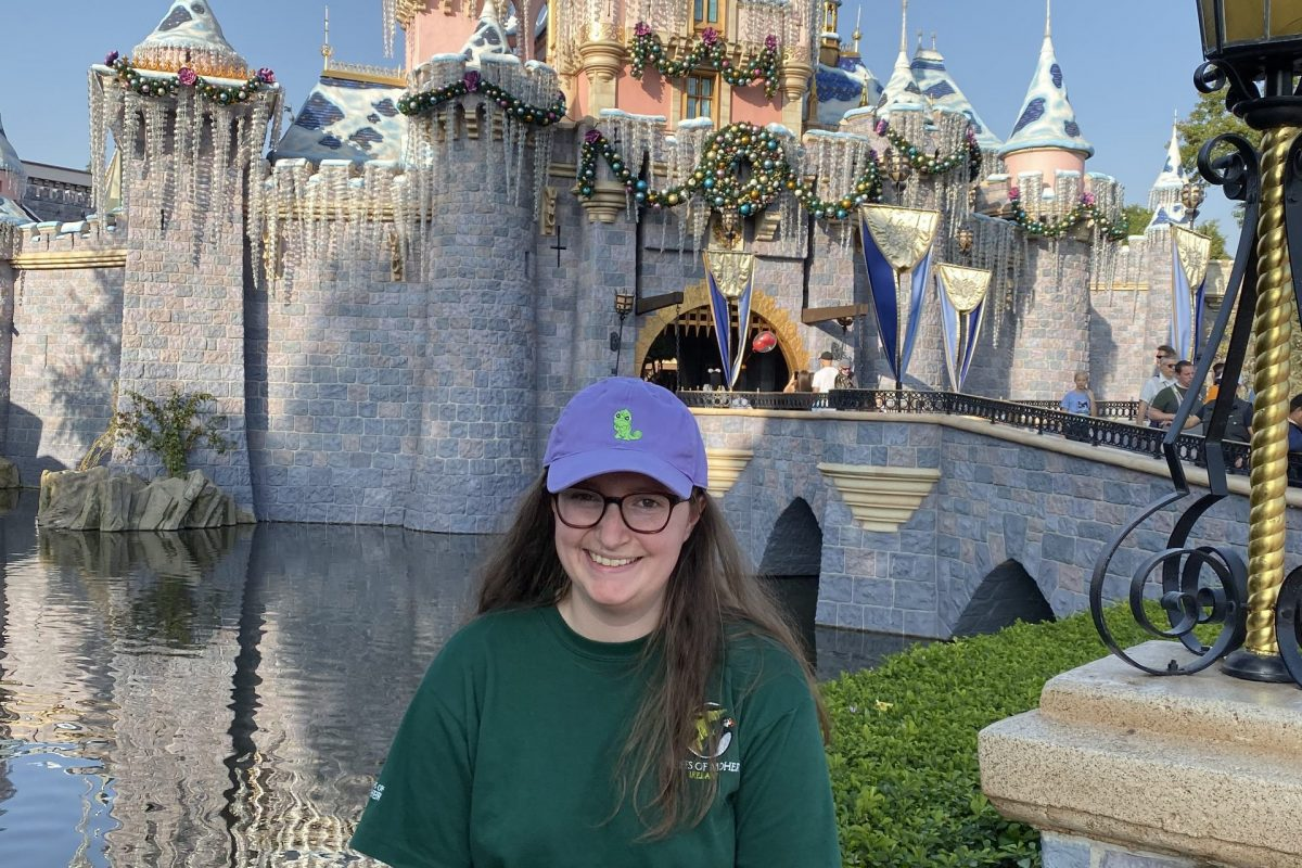 Everything I Did At Disneyland In Only 6 Hours